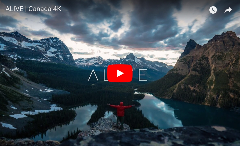 Alive -Canada 4K