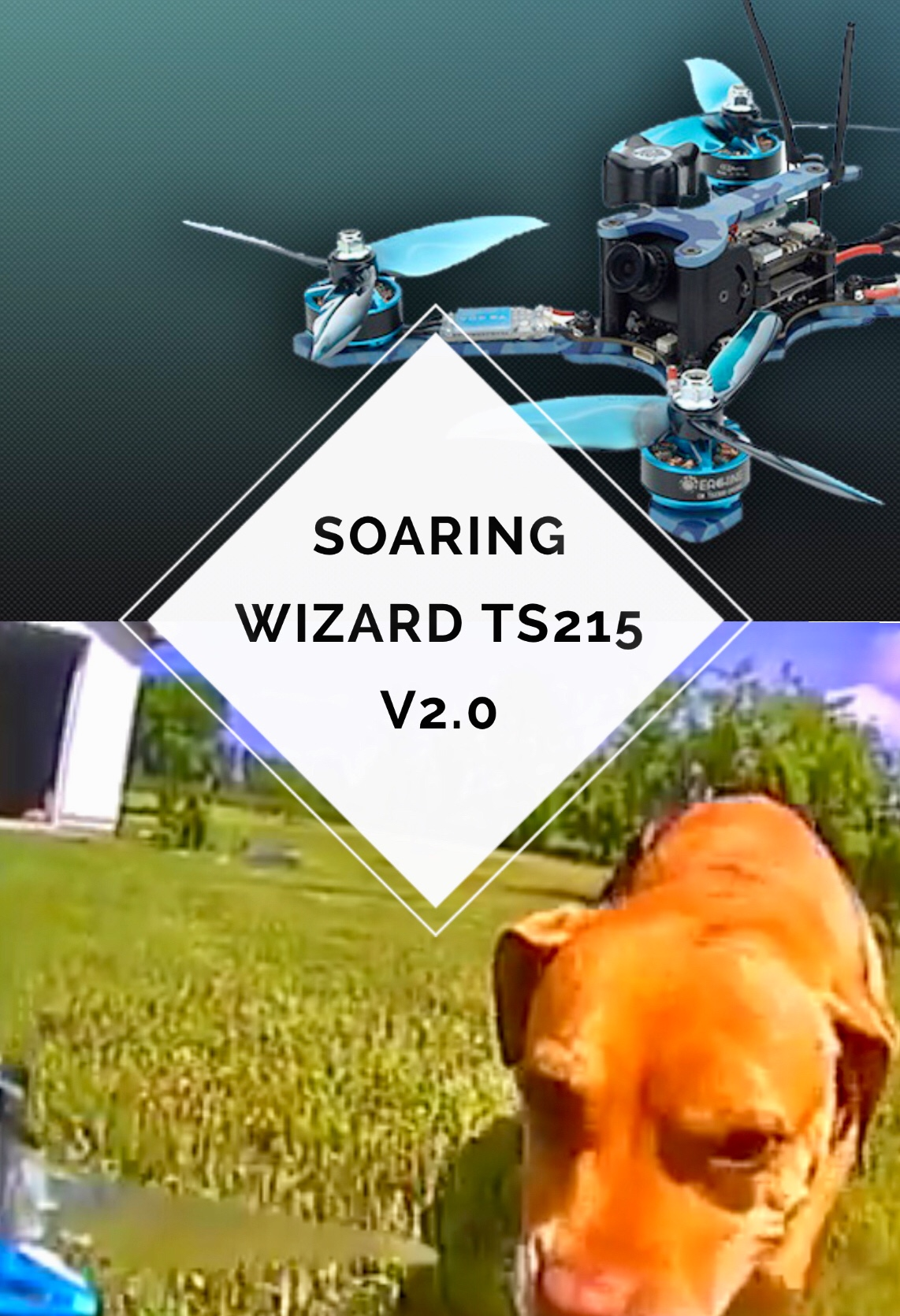 Soaring High With My New Eachine Wizard TS215 V2.0