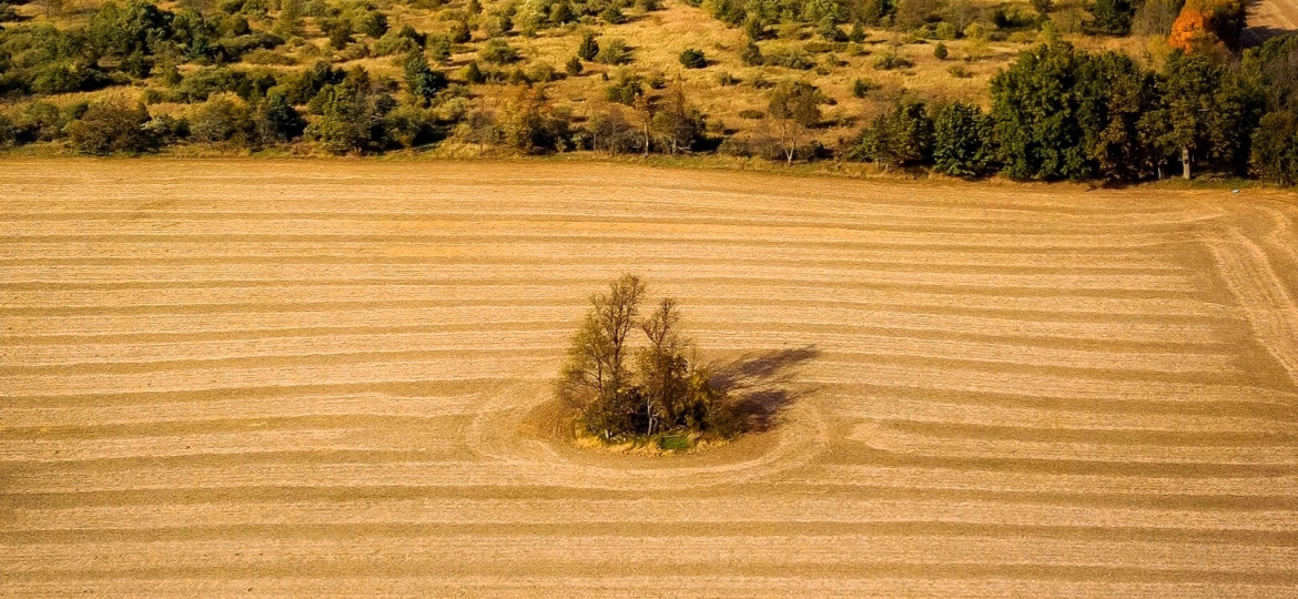 Fall Farm – Photo Of TheDay