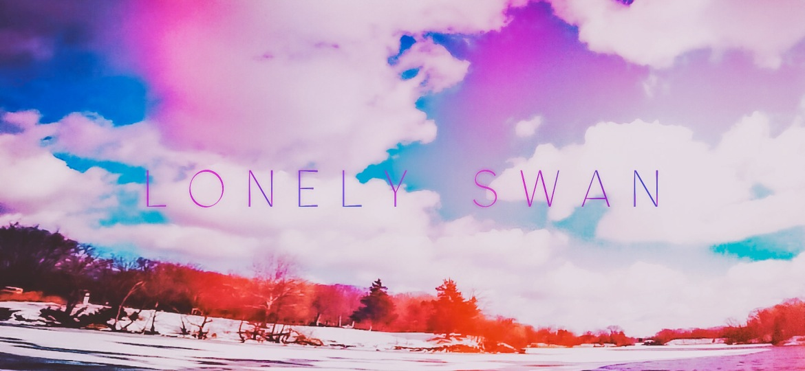 """Lonely Swan"" – DJI FPV SYSTEM"