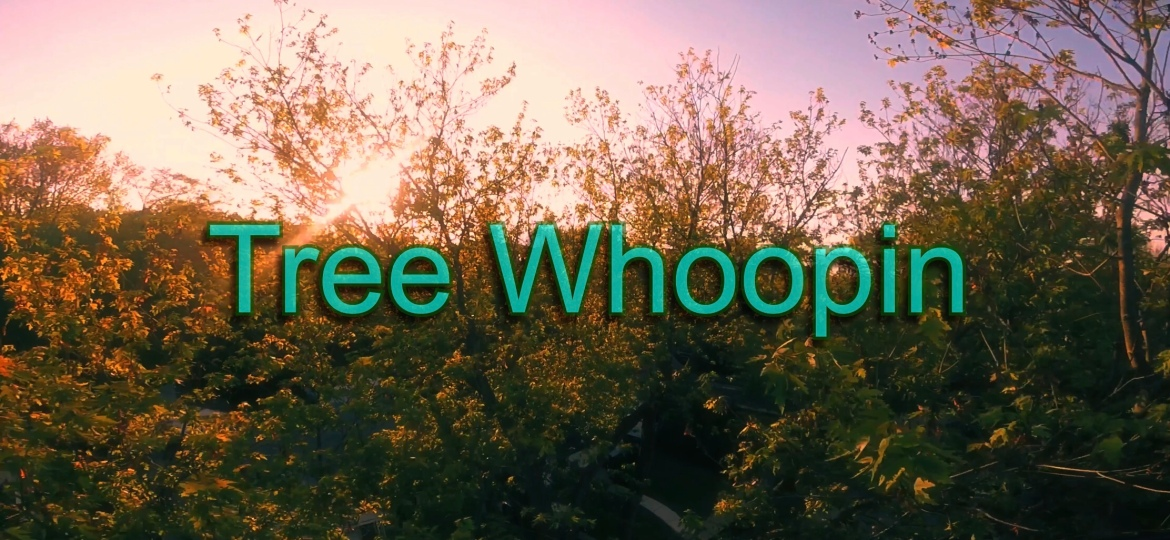 Tree Whoopin – Video Clip Of TheDay